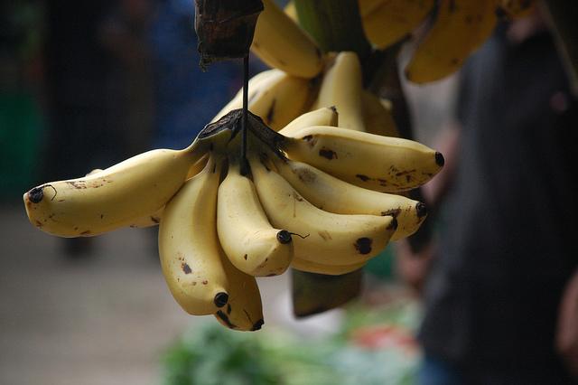 Régime de bananes suspendu.