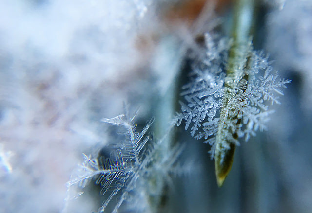Photographie de flocons de neige pour symboliser le froid.